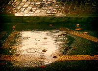 3rd - Golden Rain Puddle by Carol Erb (Senior Citizens - Non-Traditional)