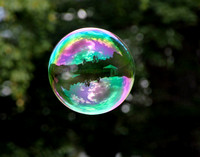 Accepted - The World in a Bubble by Diane Lansing (Professional - Color)