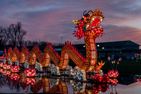 Accepted - Chinese Dragon Festival by Sue Armstrong (Senior Citizens - Color)