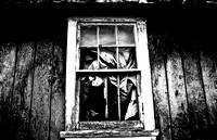 Tattered curtains by Heidi Vantassel